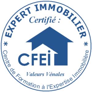 EXPERT IMMOBILIER CERTIFIE CFEI BLUE